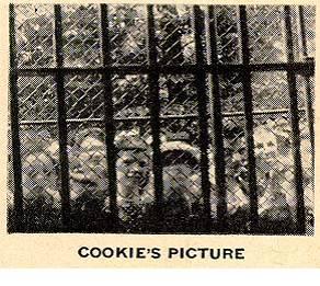 "Jaula vista por un chimpancé llamado ""Cookie"""