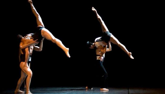 from Noel cebra danza gay
